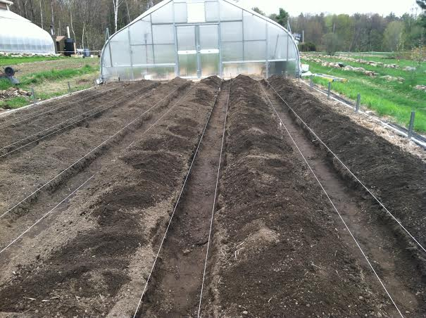Biochar/compost and sand tilled in.  Aisles shoveled onto beds.