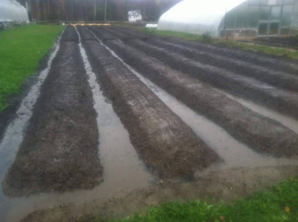 "A couple days after digging and raking the beds, a nor'easter blew through and dumped 3"" of rain.  The beds held up well."