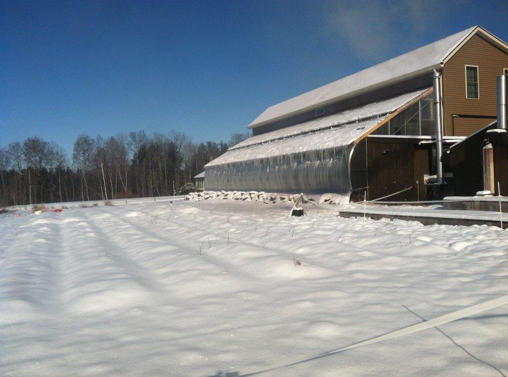 apr-16-snow-4.jpg