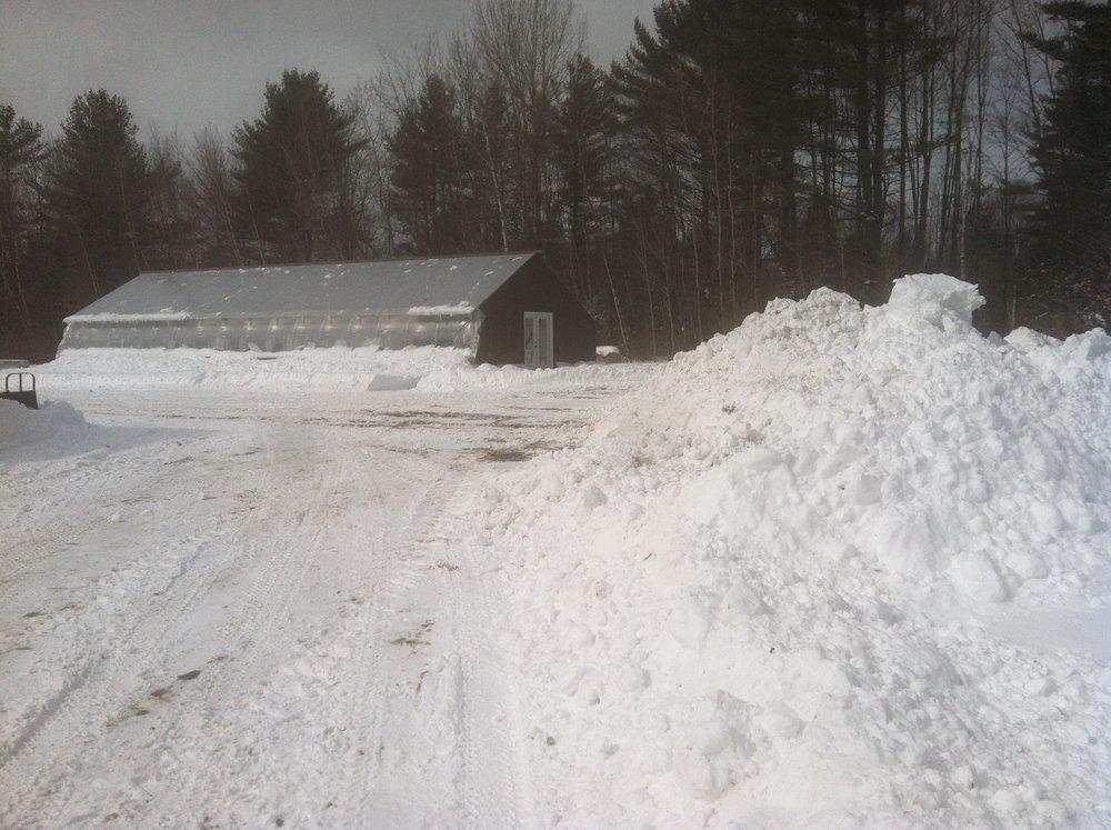 Big snowfall in mid-April delayed spring garden.