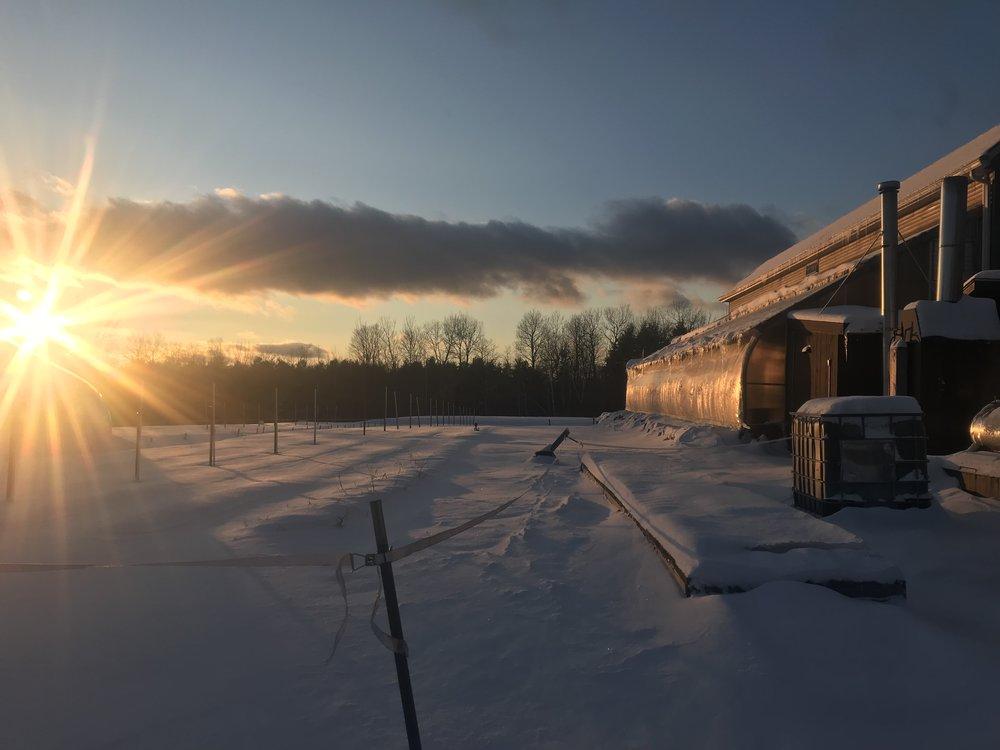 Snow covered farm!