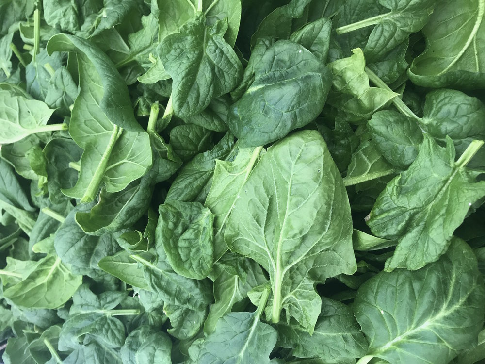 Sweet spinach will be back in March!
