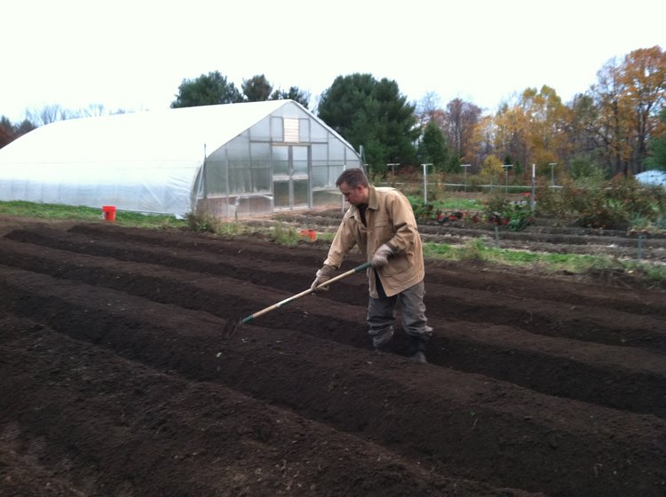 Raised beds work well to keep the soil drained in areas that have a lot of rain…