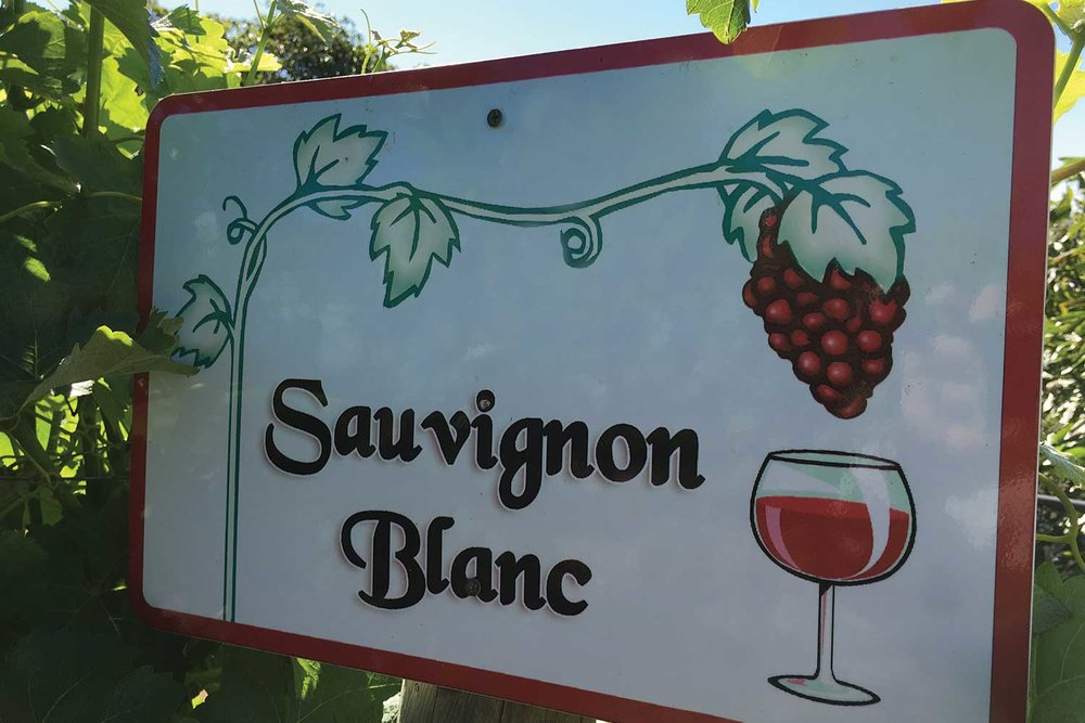 Sauvignon-Blanc-sign.jpg