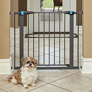 Puppy Gate - These are infinitely handy for training purposes and teaching your puppy where he or she is and is not allowed. This particular gate has a walk-through door so you don't have to hoist your leg over, and is mounted by pressure, so there are no holes in your wall! Be sure you check the size and get extensions if you need to fit a wider space!https://amzn.to/2MjSJro