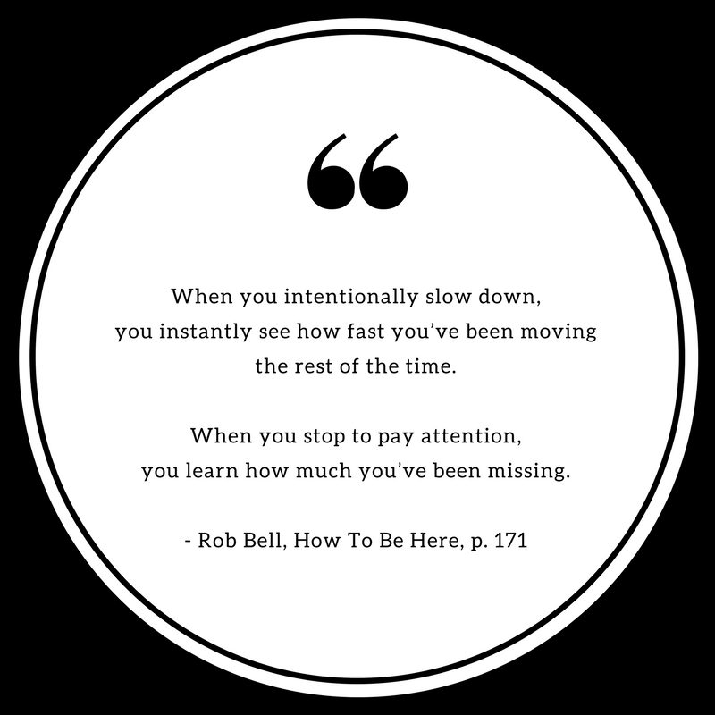How to be here quotes (12).png
