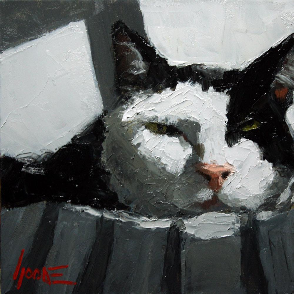 Black-White-Cat.jpg