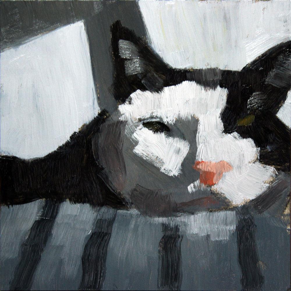 Black-White-Cat-step1.jpg