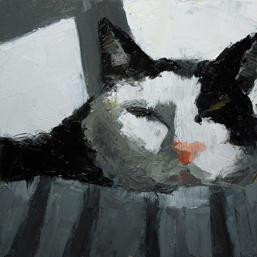Black-White-Cat-step2.jpg