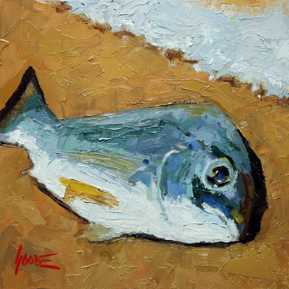 Dead-Fish-No1.jpg
