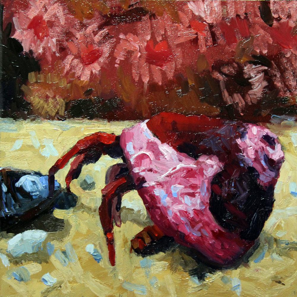 Hermit-Crab-No1-step3.jpg