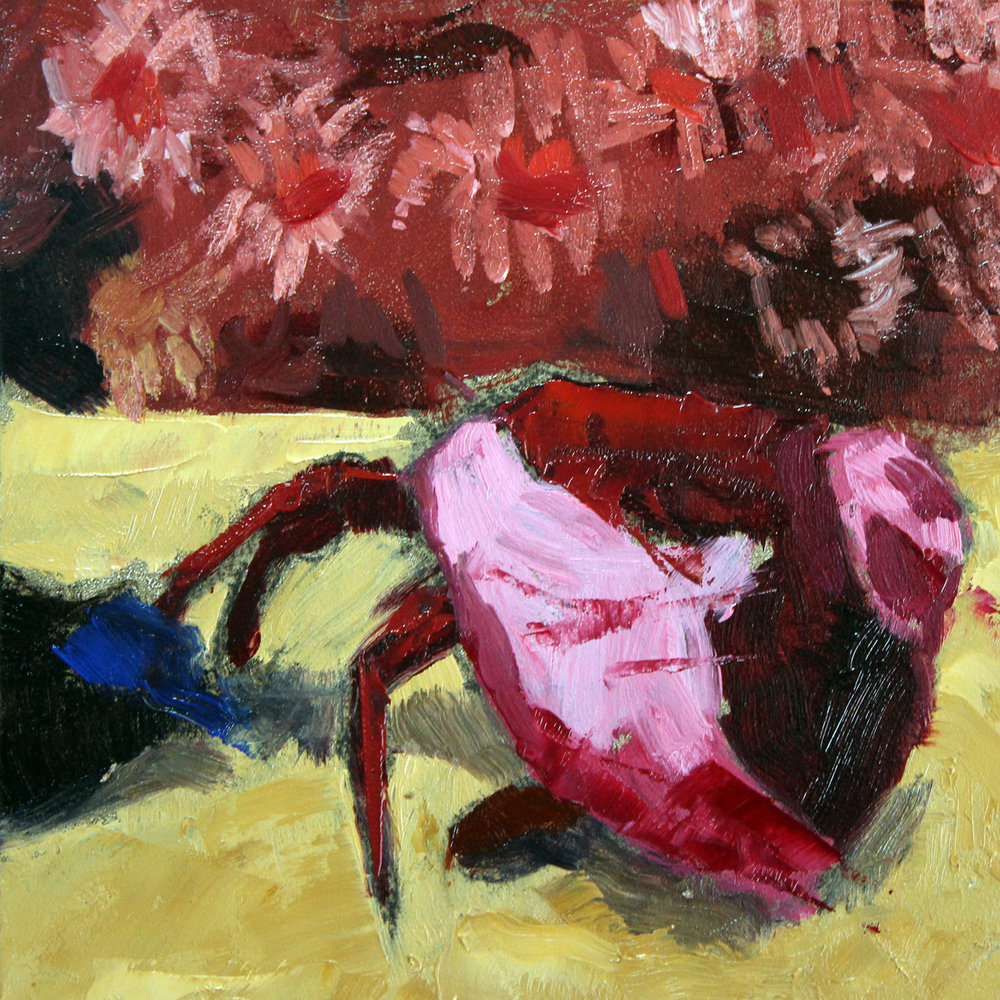 Hermit-Crab-No1-step2.jpg