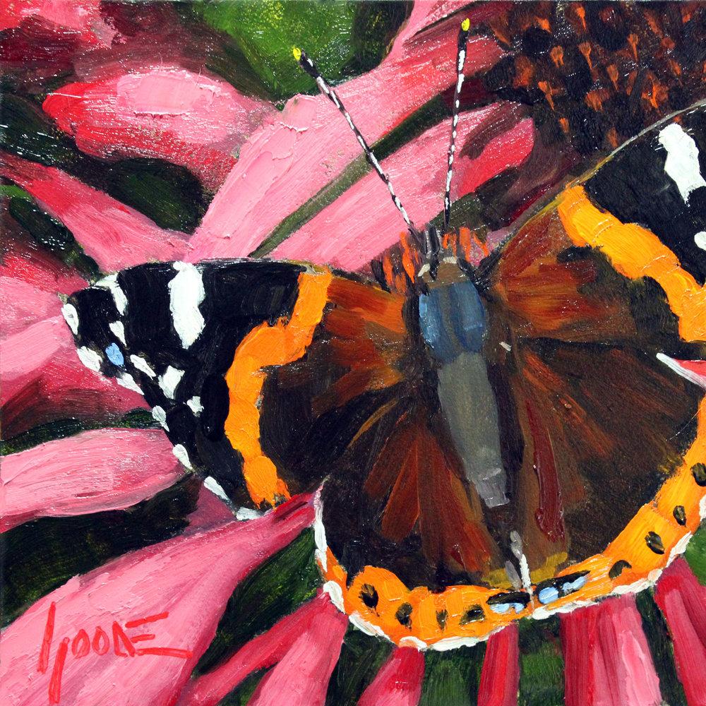 RedAdmiral-Butterfly-No2.jpg