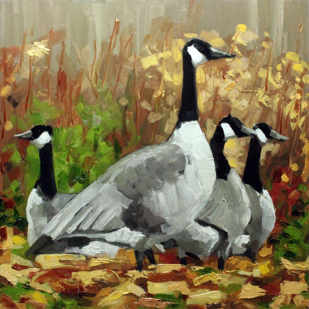Canadian-Geese-step4.jpg