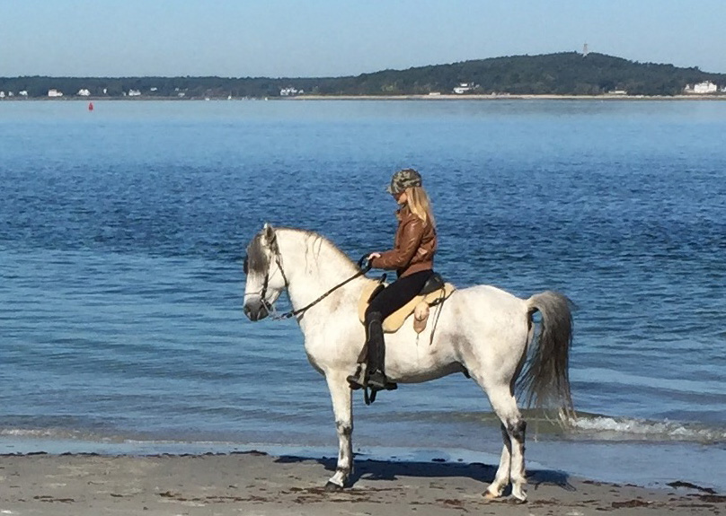 Kimberly Wallace rides on the beach in a Colin Dangaard Aussie Bareback Saddle