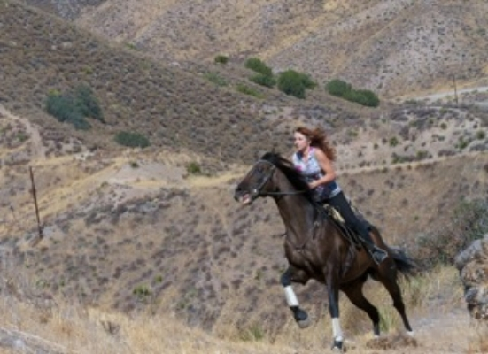 Or teaching Hollywood stars to feel comfortable enough in the saddle to ride like the wind !!!