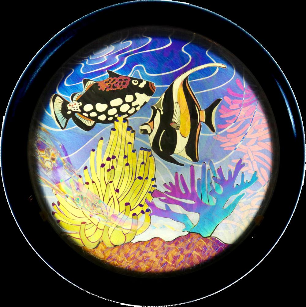 Copy of Coral Caper