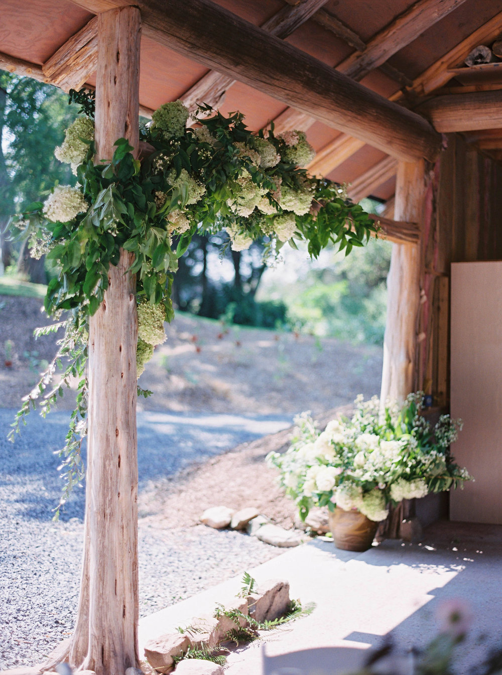 amelia_johnson_photography_hydrangeas.jpg