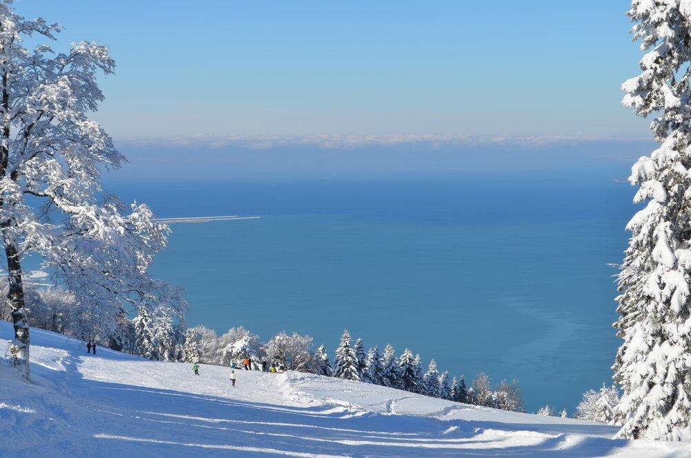 Skiing on Pfänder