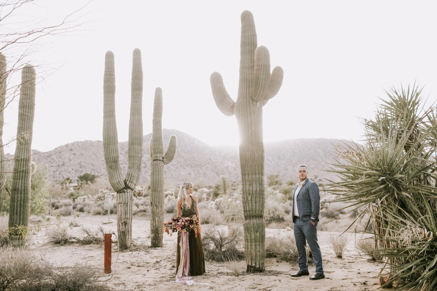 joshua tree elopement -