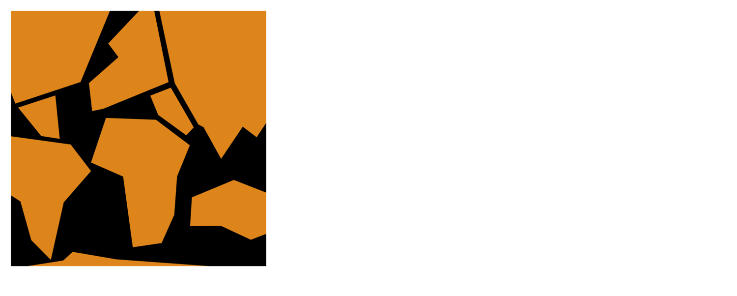Camhi Environmental Consulting LLC