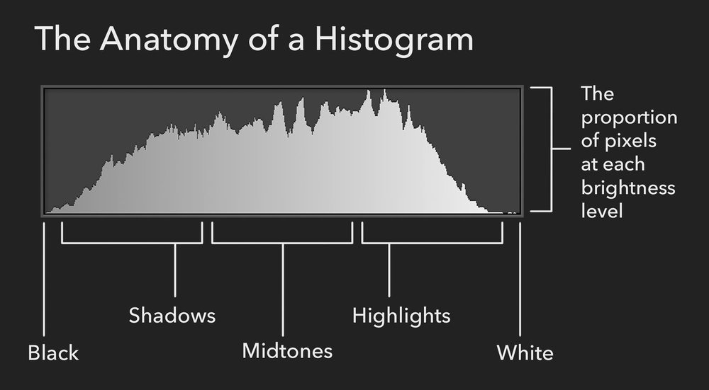 Anatomy-of-a-histogram.jpg