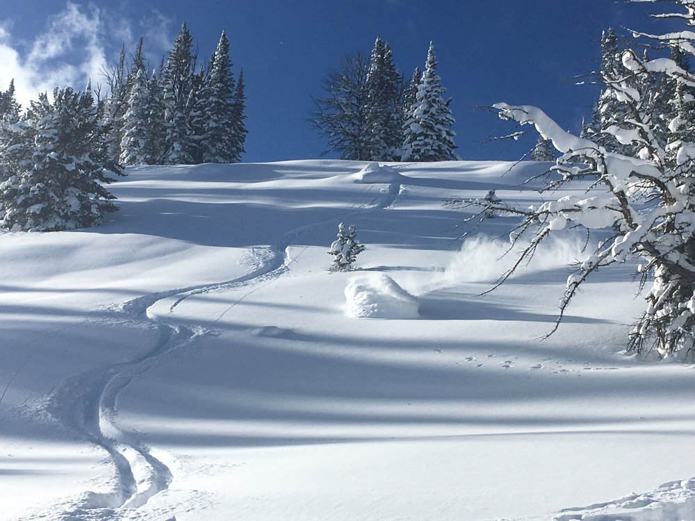 Montana Backcountry Skiing