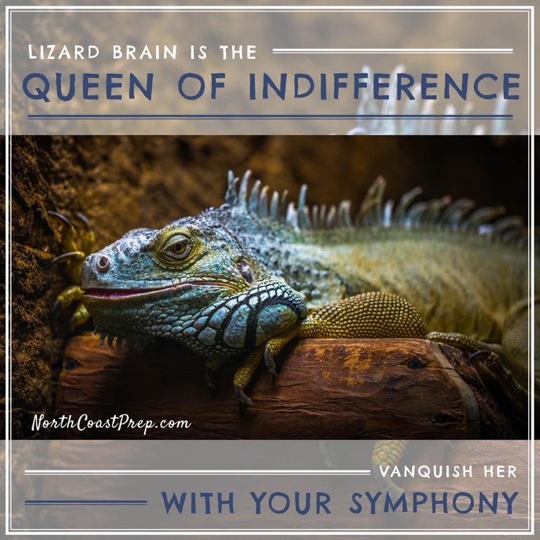 Lizard Book58.jpg