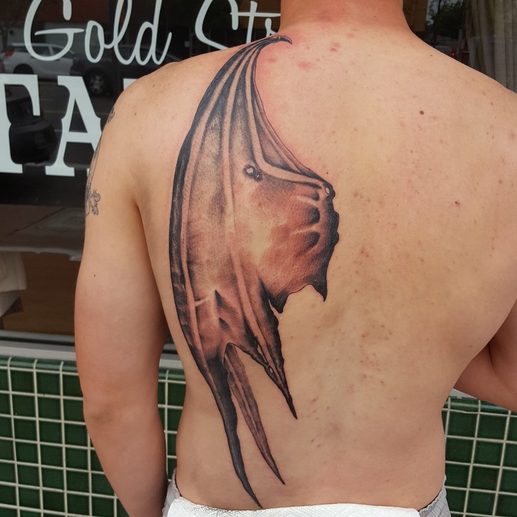 Devil wing black and gray on half back tattoo.