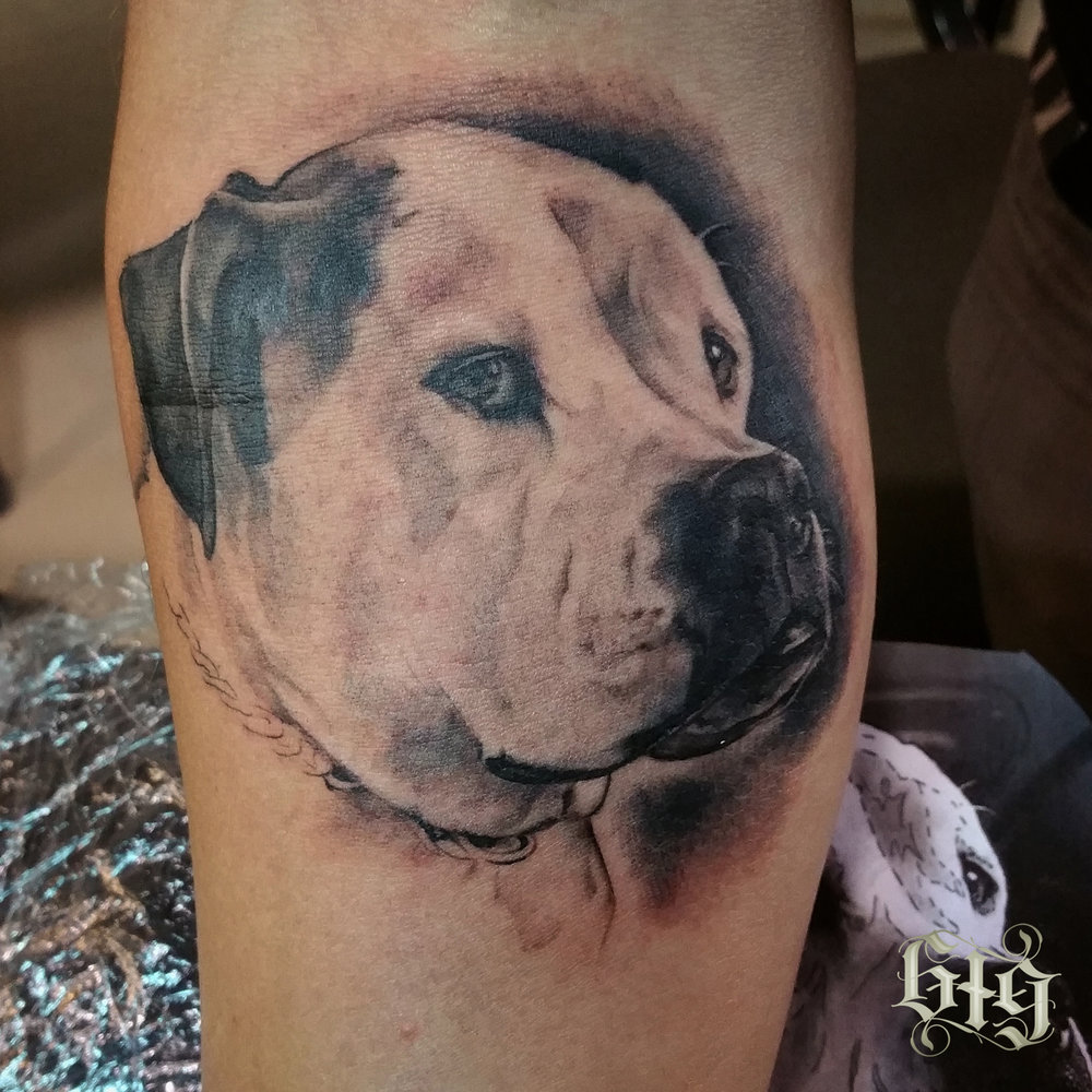 Black and gray portrait of a very sweet pup named Titus. Fine detail partial leg sleeve tattoo