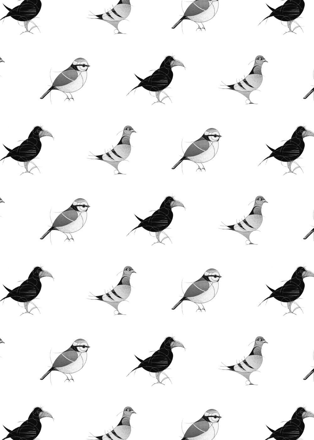 garden birds AOP