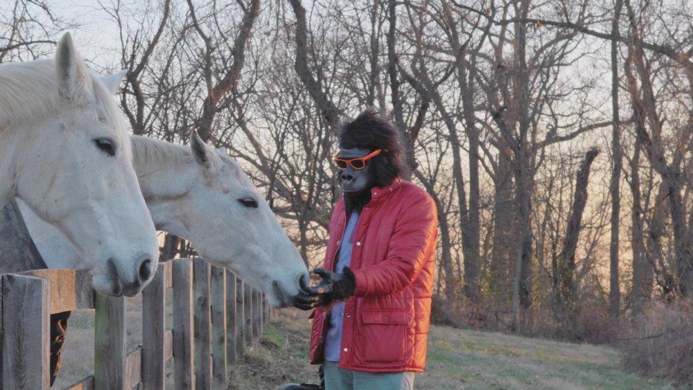 Sylvio horses 2.jpg