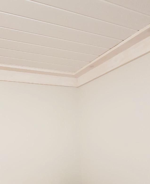 tiffany_leigh_plank_ceilings