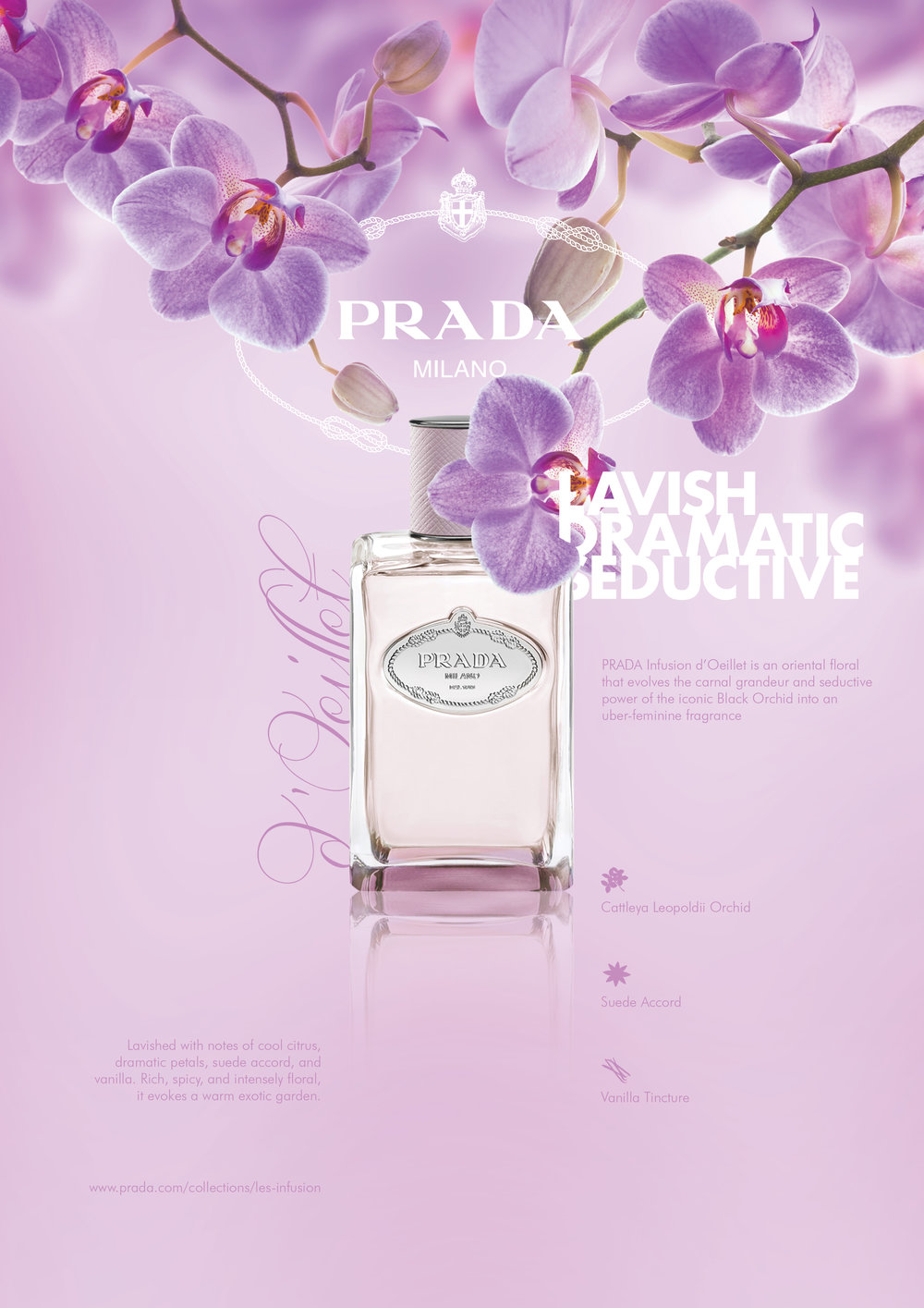perfume-oeillet.jpg