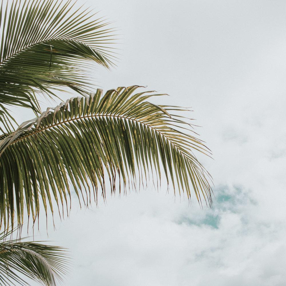 denise ramirez photography boise travel