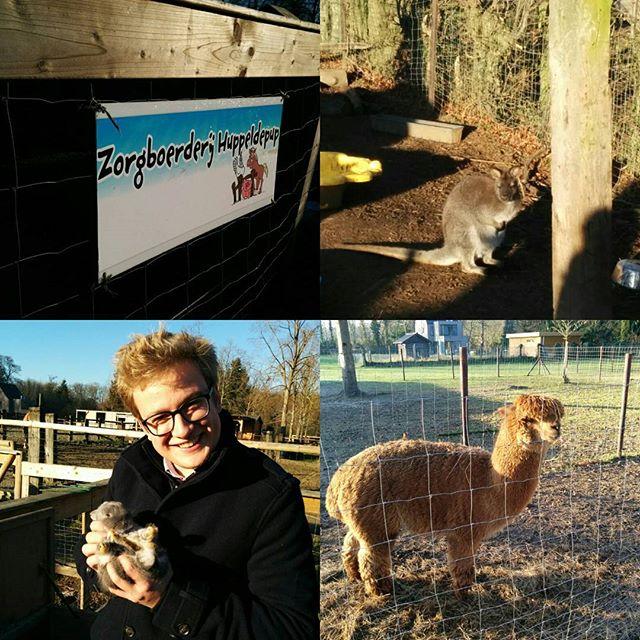 Vandaag brachten we een bezoekje aan een prachtig initiatief in Humbeek. Zorgboerderij Huppeldepup zorgt zowel voor een knusse thuis voor boerderijdieren als voor een zinvolle dagbesteding voor mensen met een beperking. 🐈 🐎 🐖 🐑 🐇🐔 🐦 🐍 #daanwiltgrijskonijn #inclusie