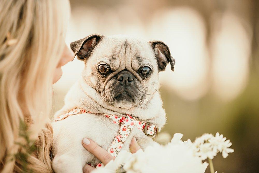 isleworth-wedding-33.jpg
