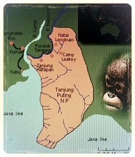 Map of Tanjung Putting National Park, Central Borneo (Kalimantan Tengah)