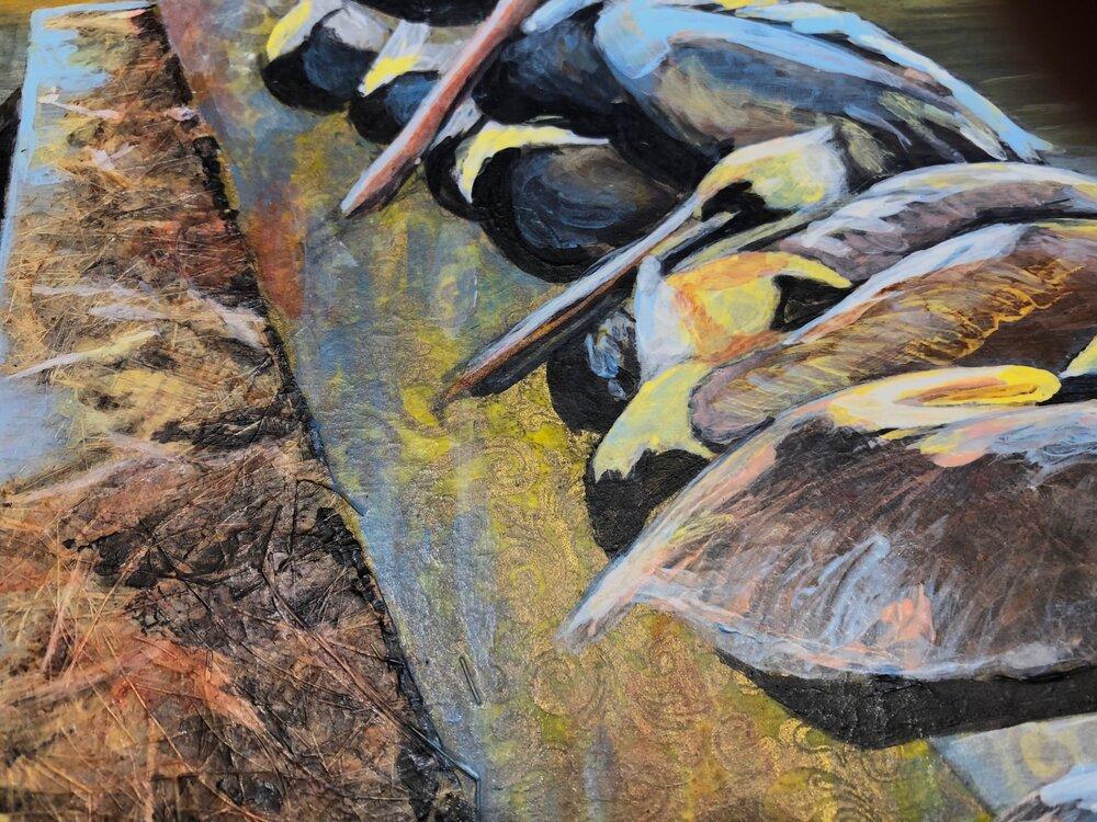 Pelicans, Hilton Head (detail)