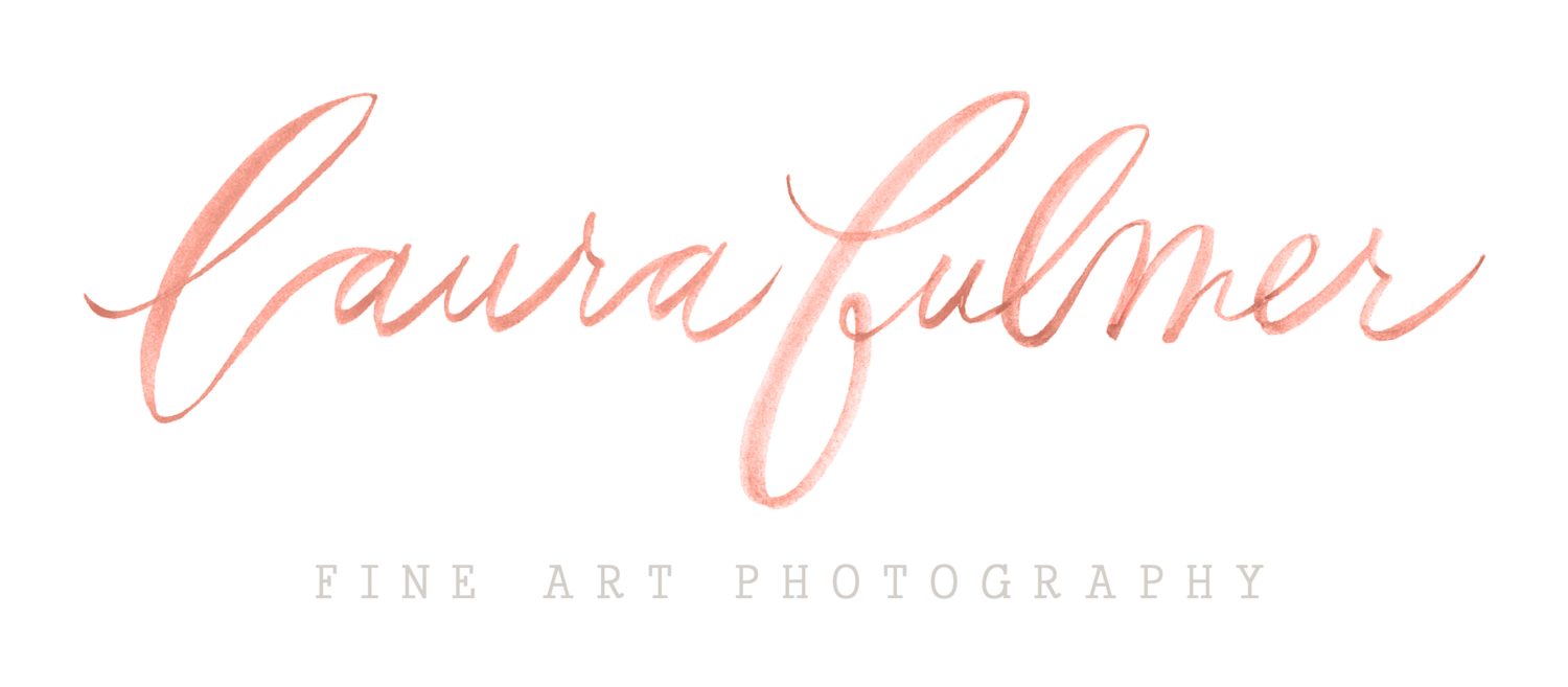 Laura Fulmer Photography