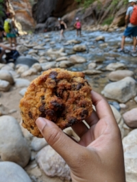 The perfect hiking fuel!