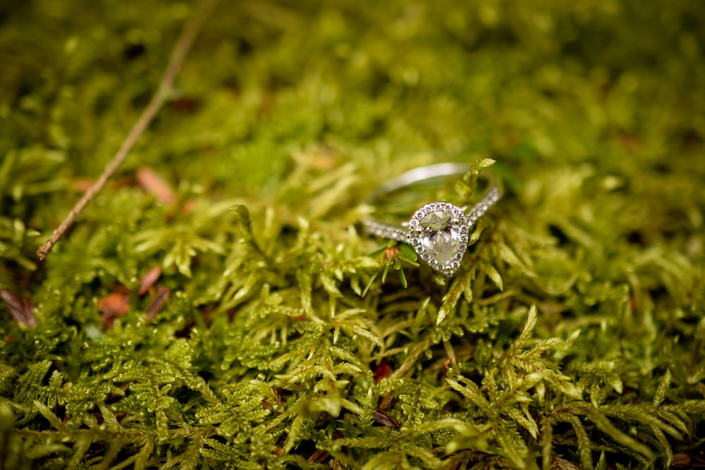 Maine Woodland Engagement Ring Day Jewelers Forevermark Diamond