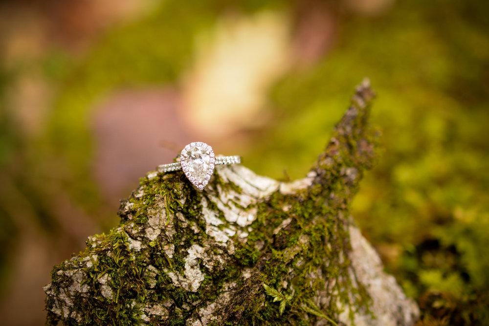 Maine Woodland Engagement Ring Days Jewelers Forevermark Diamond
