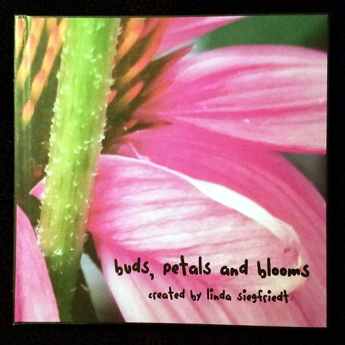 Buds, Petals and Blooms - An inspirational book using photos and quotes created as a metaphor for anyone going through transition and growth in their life.