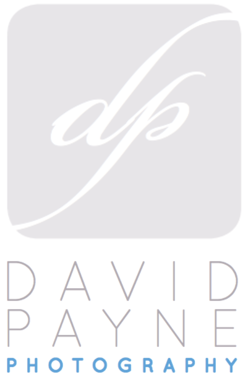 Knoxville, Nashville, Chattanooga Wedding Photographer | David Payne Photography
