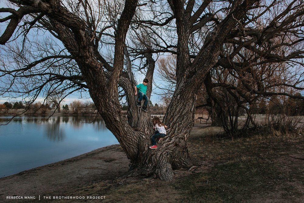 "Everywhere we go you both have to find the biggest tree and climb it.  We recently started walking Luna every evening around this lake and you have fallen in love with this tree specifically.  Every time we go here, you both spend the time gathering sticks and climbing into the tree to build your own secret ""tree house.""   I love when I see you both bonding and building not only houses, but memories together.  This little lake has definitely become a place where I truly enjoying taking you and look forward to doing with you both every evening."