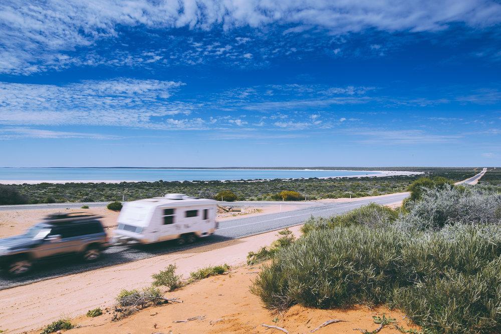 Shark Bay - Photo Elements Margaret River-196.jpg