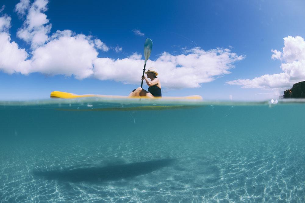 Shark Bay - Photo Elements Margaret River-478.jpg