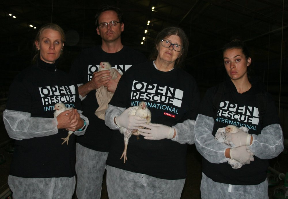 The team from Animal Liberation Victoria, Australia