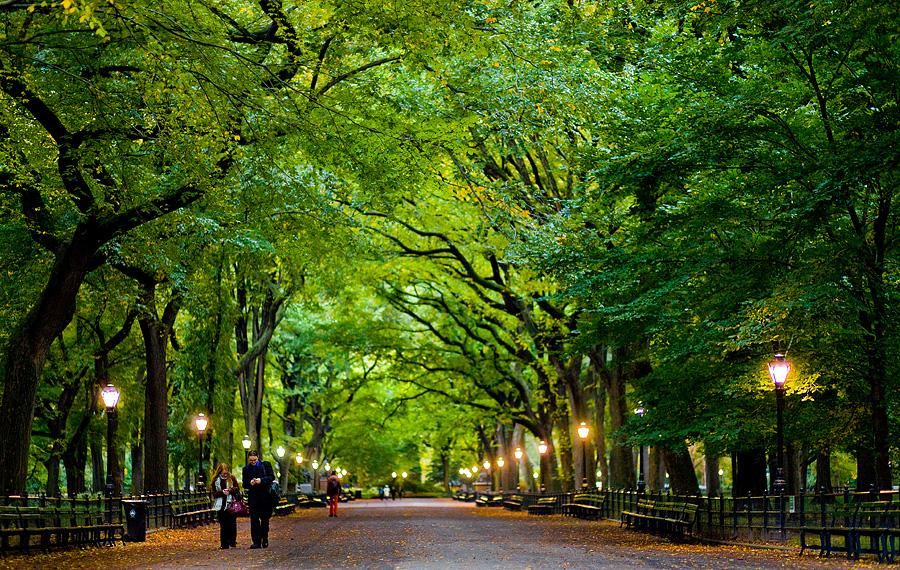 Central Park New York 2013.jpg